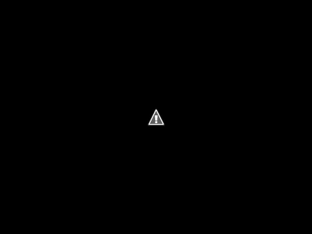 FS Heavily Modded Logitech G27 (AUS) - Sim Gear - Buy and Sell