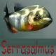 serrasalmus