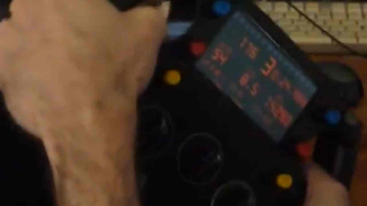 Z1 Sim Wheel w/ LCD For Logitechs, TSW and ECCI