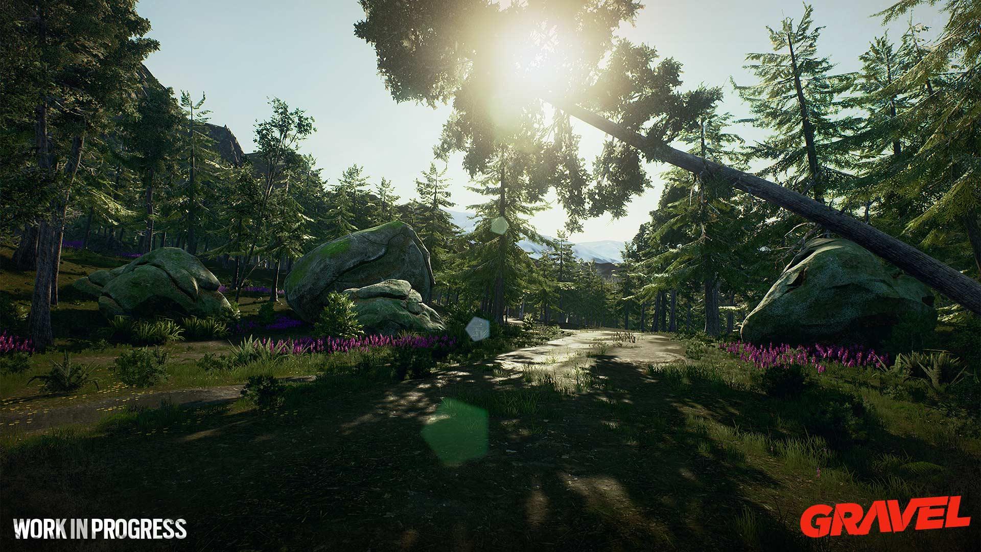 Gravel wip forest sunshine