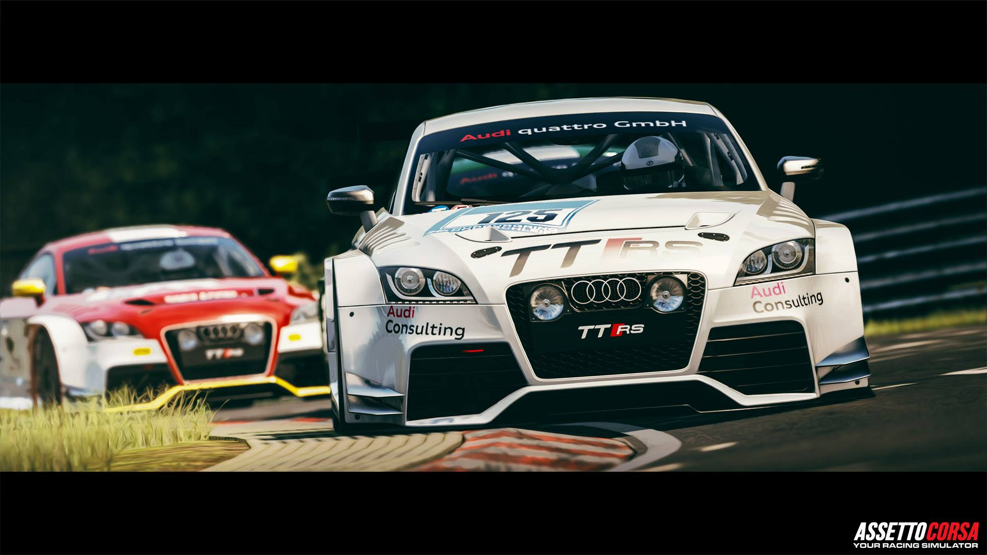 Assetto Corsa Ready To Race DLC Audi TT RS (VLN)