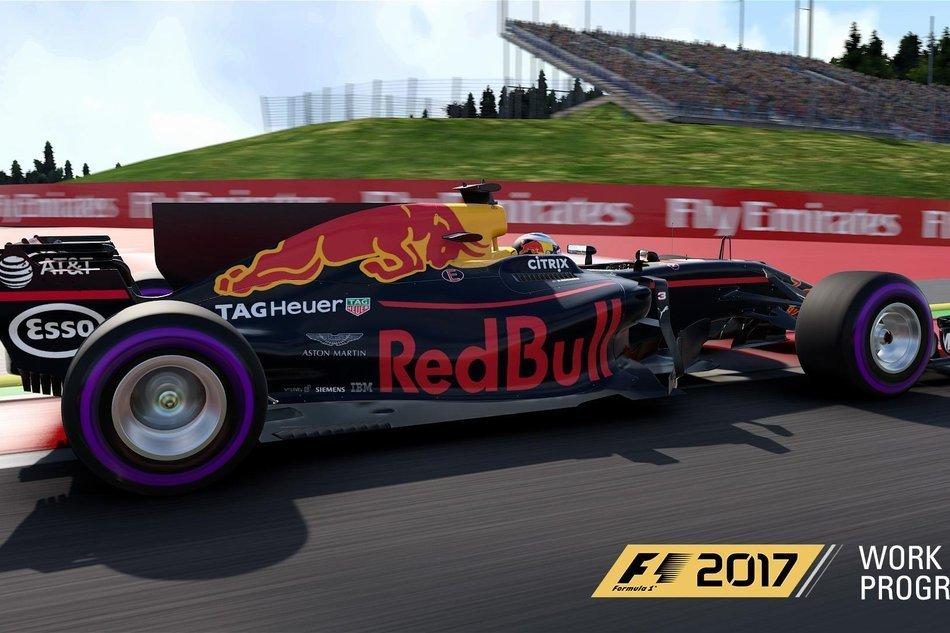 F1 2017 RB13 8