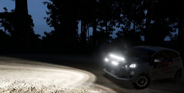 WRC 7 Ford Fiesta at night