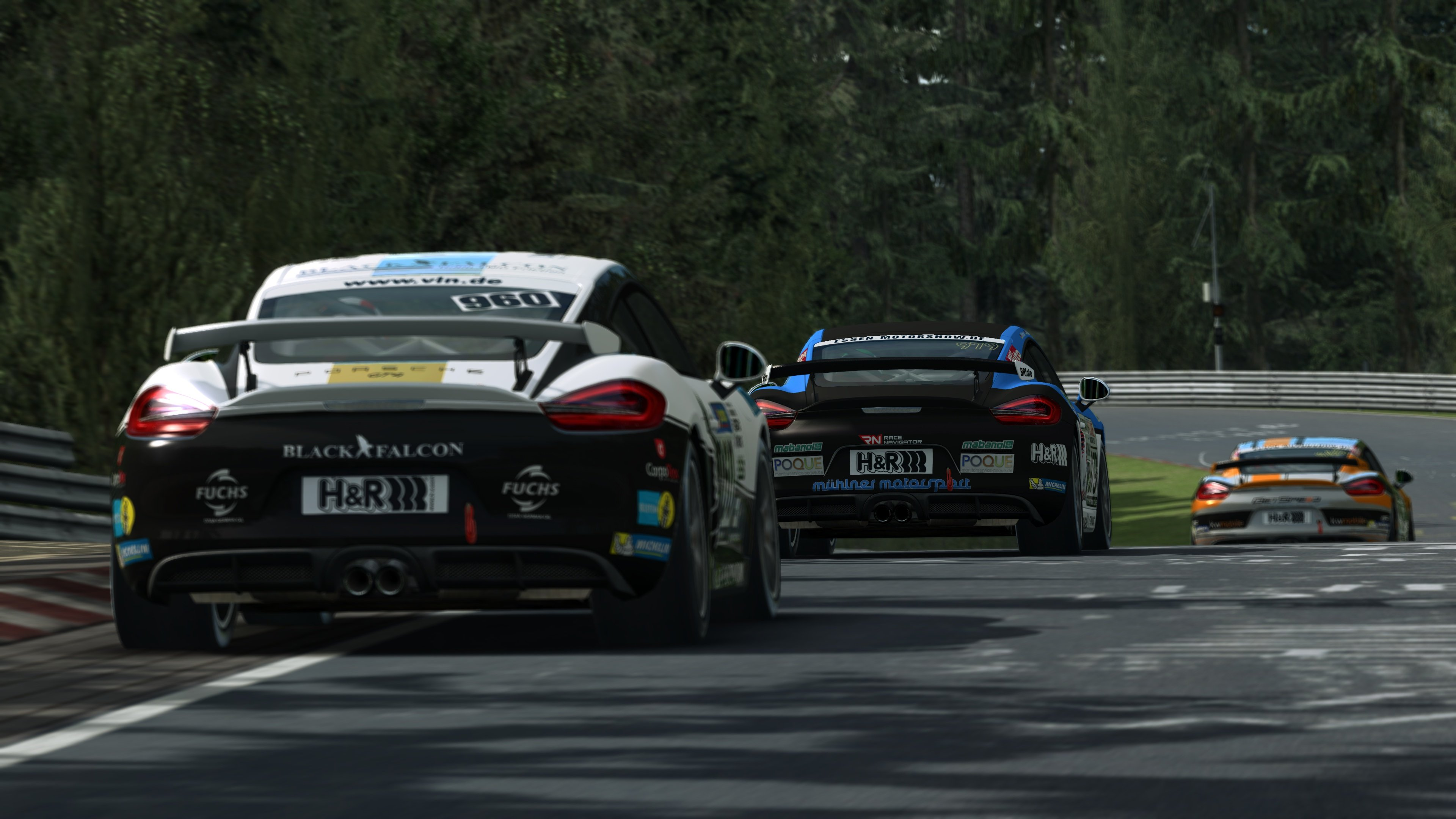 RaceRoom Porsche Cayman GT4 Clubsport 11